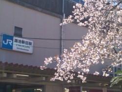東大阪市のJR学研都市線片町線の鴻池新田駅前です。<br /> 事務所は、駅前徒歩1分の三菱東京UFJ銀行の3階です。<br /> エレベーターもついております。夫婦二人の事務所です。お気軽にお越しくださいませ。<br /> <br />