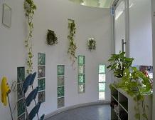 <br /> 緑も沢山飾ってあり入りやすい玄関になっておりますので、何でもご相談してくださいね!